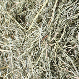 Nutritional Information - products: Burris Farms Orchard Grass Alfalfa Mix