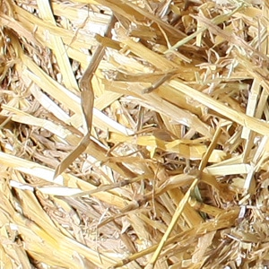 Nutritional Information - products: Burris Farms Straw